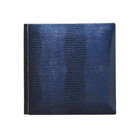Álbum Hoja Cartulina Iguana Azul 25X25 15B